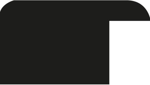 Baguette 12m bois profil méplat largeur 2.3cm couleur noir laqué