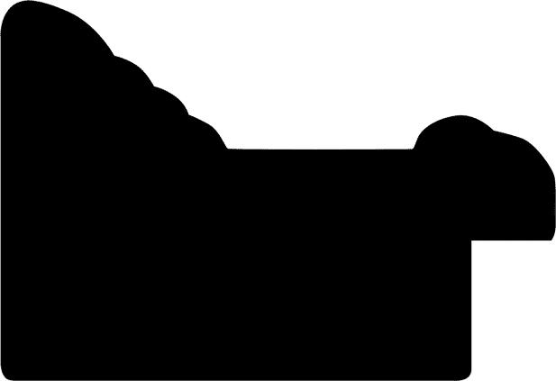 Baguette 12m bois profil braque largeur 5.2cm noir mat finition pore bouché