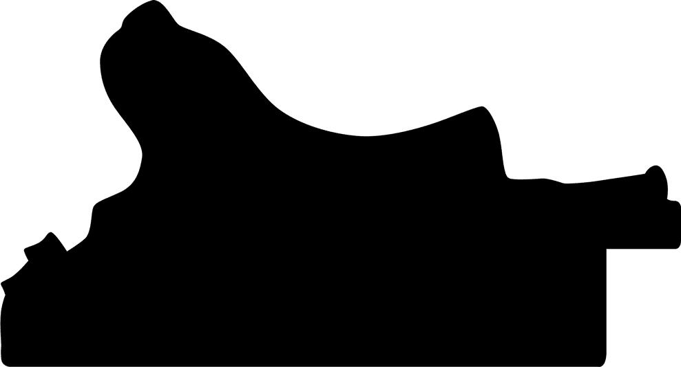 Baguette coupe droite bois profil incurvé largeur 8.5cm noir antique classique nez vermeille noirci