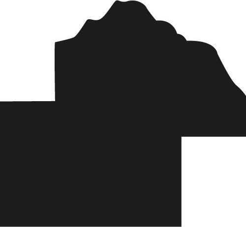 Baguette coupe droite bois profil bombé largeur 2cm couleur noir antique style