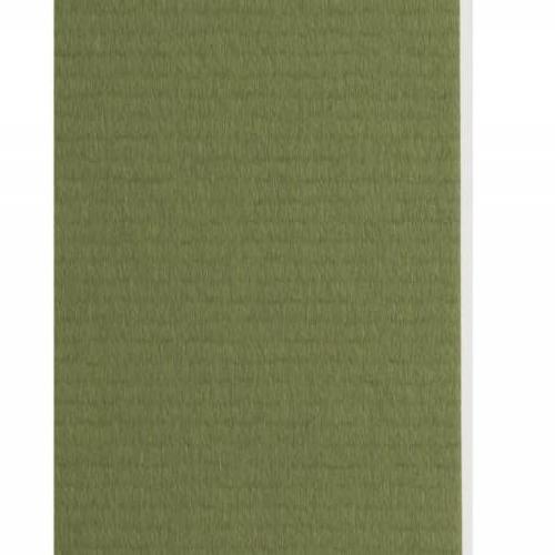 Plaque passe-partout vert tilleul, âme blanche, épaisseur 1,4mm dimension 80x120cm - Pack de 25 feuilles